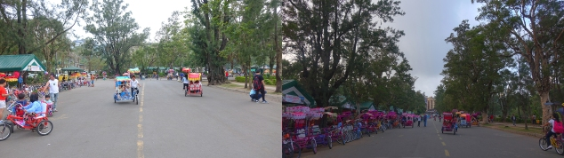 Biking1_collage